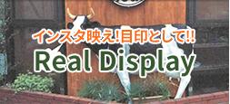 Real Display
